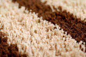 Carpet Texture 4