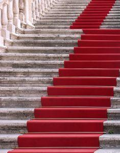 Roma Ladder