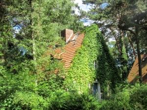 Cozy Rural Home 2